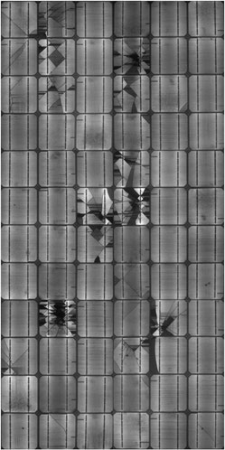 EL-Aufnahme eines beschädigten Moduls