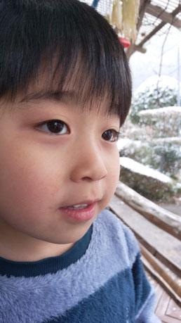 外を見つめる子供の写真