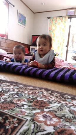 赤ちゃん二人の写真