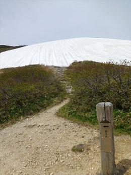 ▲「銀玉水」看板とその先に広がる残雪斜面。直登しなければなりません。