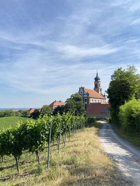The hamlet of Castell - Cradle of Sylvaner in Germany