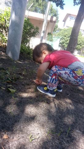 校庭で遊ぶ子供の写真