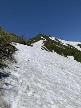 ▲鳥原山から小朝日岳山頂を望む