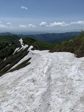 ▲小朝日岳側から鳥原山方面の残雪
