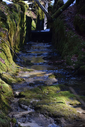 Flößerkanal zwischen Kammer- und Toplitzsee