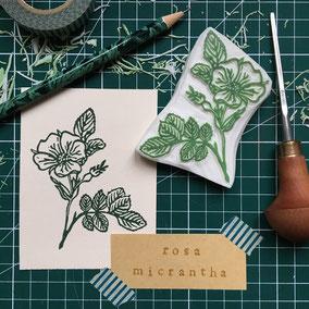 Tampon rose herbier gravé à la main Le Héron Graveur
