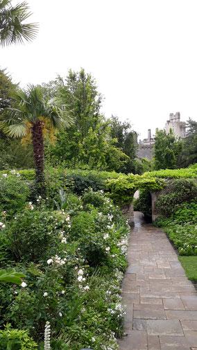 In einem der vielen Gärten...