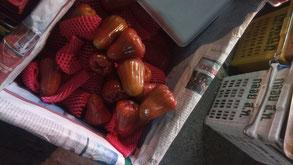 """Le """"champong"""", fruit qui poussait dans le jardin de Dada à Chiang Rai"""