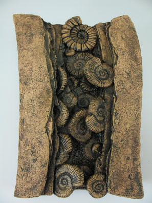 Ammonite Wall Piece