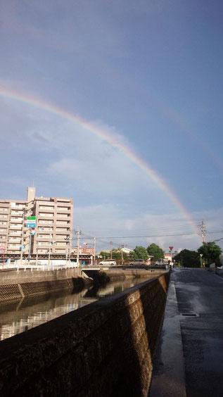 キレイな虹の写真