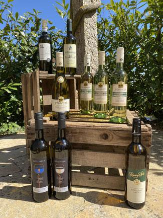 Weinempfehlung zu Spargelgerichten