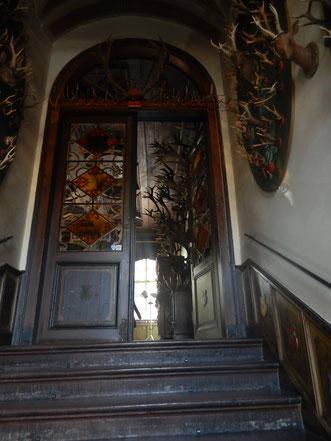Teile der Hirschgeweihsammlung im Erbacher Schloss
