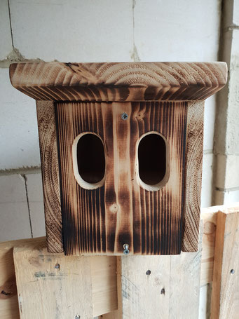 Nischenbrüterkasten, Unikat  aus der Holzwerkstatt von ASH-Sprungbrett e.V.