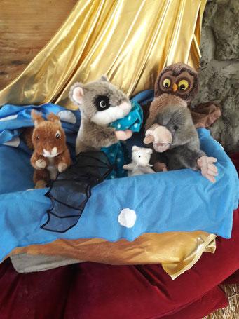 Musikmärchen Karneval der Tiere mit Annette Flury-Jegge