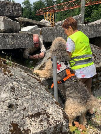 Denis unter Trümmerbergen gefunden von Corinne mit Chesmu