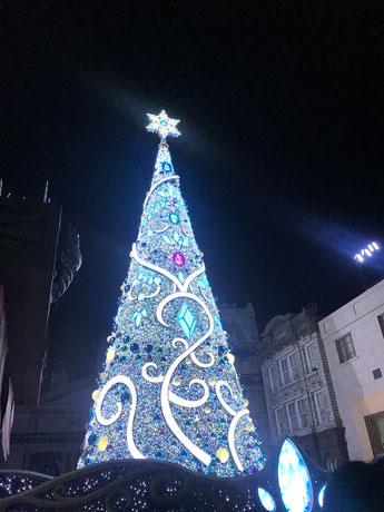 クリスマスツリーがライトアップ!