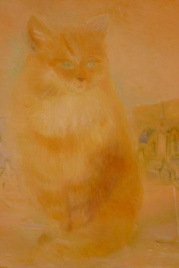 A dreaming cat 50x40cm