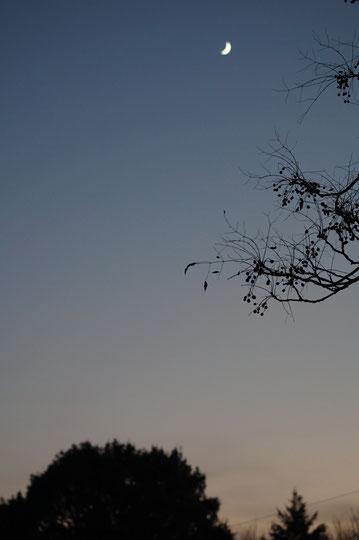 陶芸家 ブログ 茨城県笠間市 女性陶芸家 日常生活 土鍋 温かい食事 冷え取り 冬の三日月