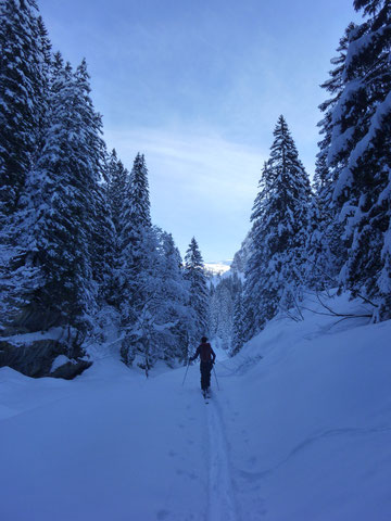 Pfannenstock, Skitour, Winterkorridor, Muotathal, Bisistal