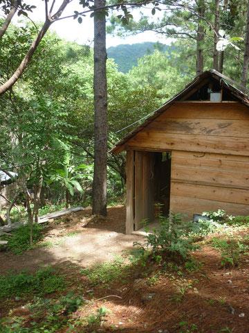 Un bungalow au milieu des pins, pour le plein de nature. Possibilite de dormir pour 6 personnes.