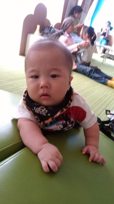 山を登る赤ちゃんの写真