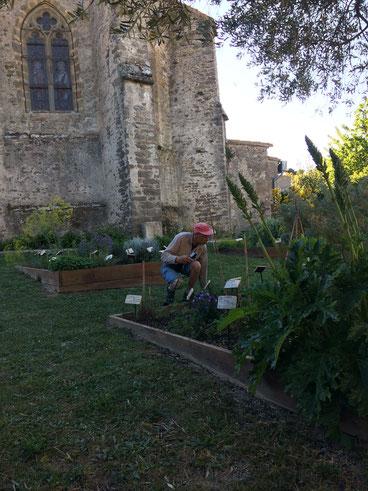 Le jardin médiéval...