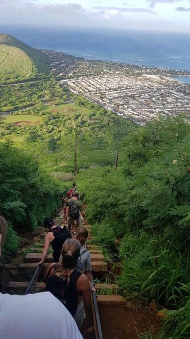 freaky travel präsentiert: Die Top 5 Tipp für deinen unvergesslichen Urlaub auf Hawaii in Amerika. Bestaune und genieße die atemberaubende Natur Hawaiis auf deinen Wanderungen