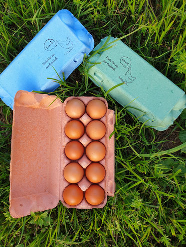 Eiernesterl Nudeln