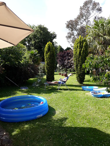 ...und sogar einen Swimmingpool...