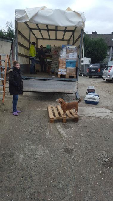LKW packen für Rumänien Feb. 2016