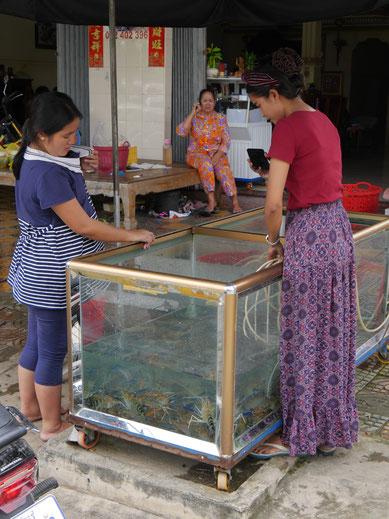Allerhand Krustentierchen in Takeo, Kambodscha (Foto Jörg Schwarz)