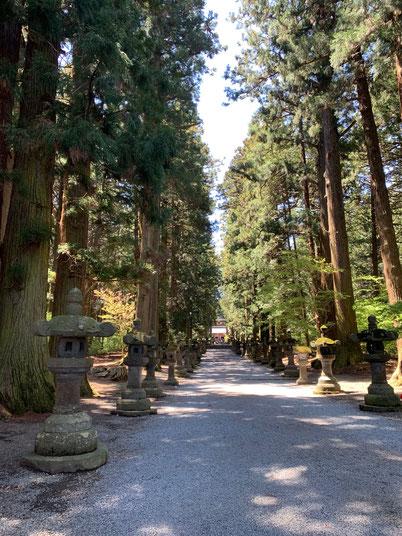 富士浅間神社 参道