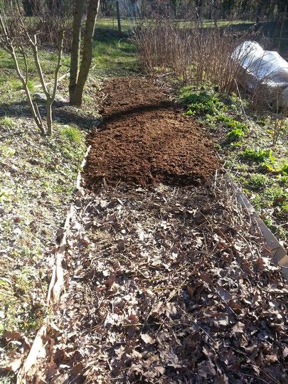 grande lasagne avec toute la biomasse du jardin