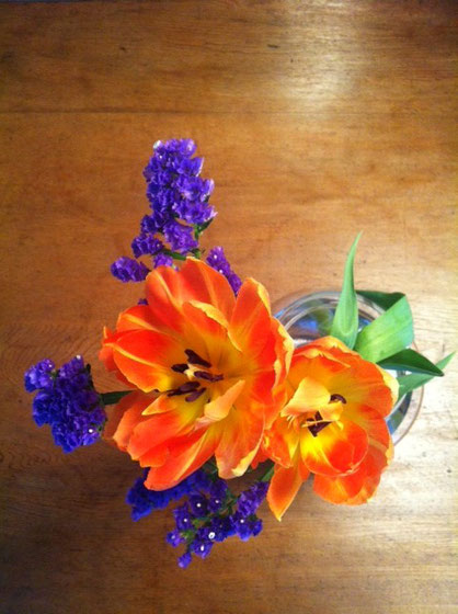 今朝見ると、、開花♪