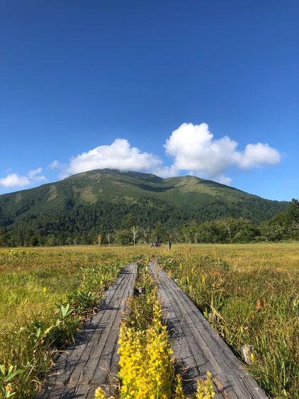 木道と至仏山(しぶつさん)