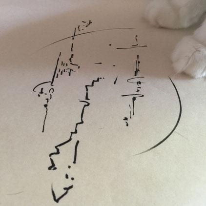 ライトランゲージ文字 by 青木せい子