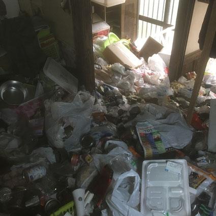 玄関。ここもたくさんの猫缶が見えます。ゴミの下も大量の猫缶がありました。