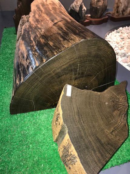 これは楢の珪化木