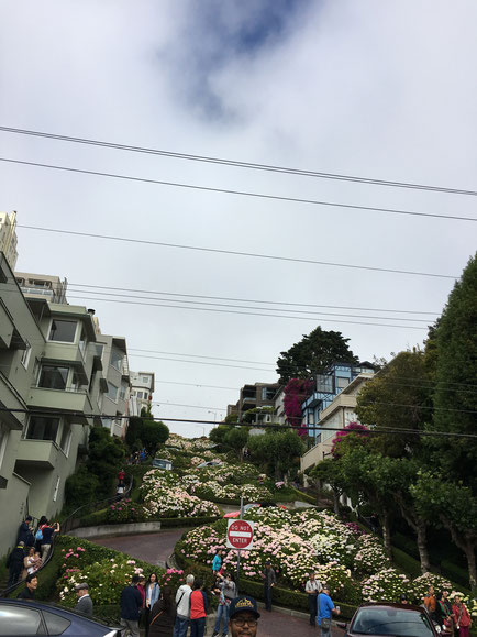 die berühmte Lombard Street mit ihren vielen engen Kurven