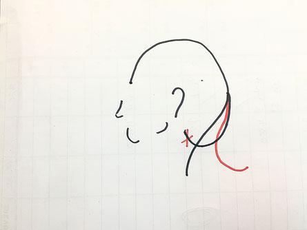 横浜・日吉・菊名・美容室☆女性の笑顔を作る専門家☆美容家 奥条勇紀 どうして髪の毛がはねてしまうの?解決方法は朝の一手間にあり