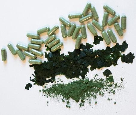 Phytolize Marine Phytoplankton Pulver Flakes vegane Kapseln