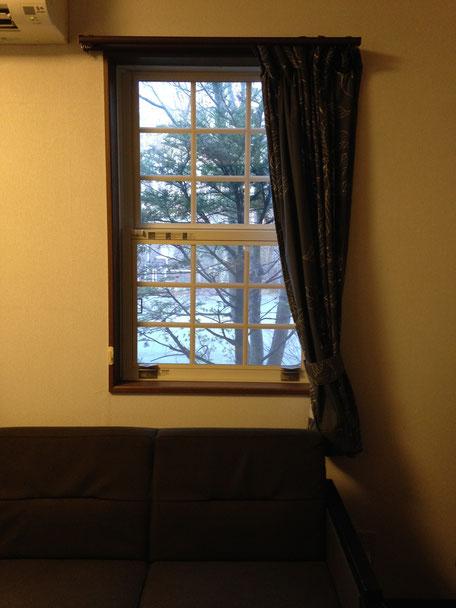 この窓の目の前の木に