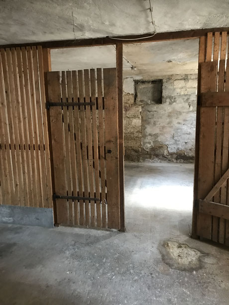 Vohrer Schimmel im Kellerraum und alte Kellerverlattung