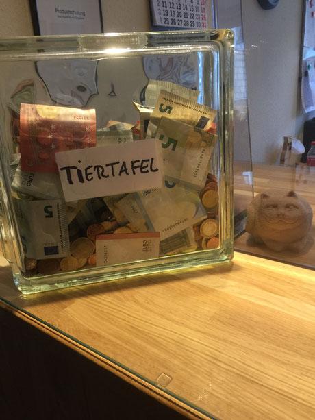 Katzenkasse, Foto: Plück