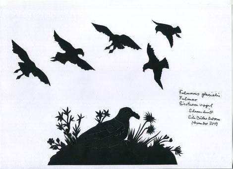 Scherenschnitt Eissturmvögel