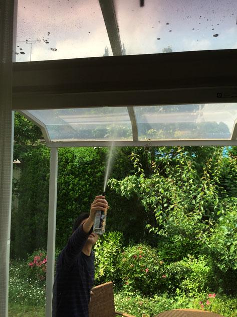 蜂の巣めがけて殺虫剤を照射するガーデンドクター柴ちゃん。危険な任務だ。