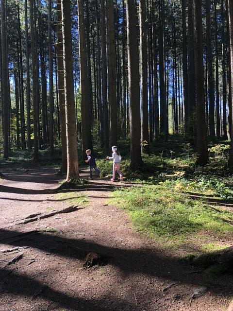 Ausflug ins Grüne und in den Wald mit Kindern