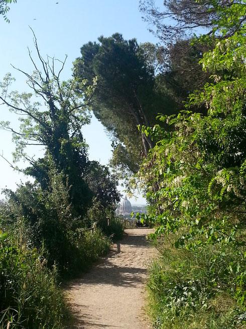 Un tempo monte Mario era anche noto come mons Gaudii, monte della gioia. Perché? Provate a camminare per decine (o centinaia) di chilometri in pellegrinaggio verso Roma e vedere spuntare la basilica di san Pietro...una gioia per gli occhi (e per i piedi)