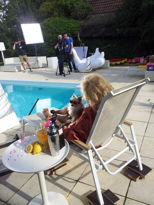 Clicker-Training für Hunde - HUNDESCHULE IN STUTTGART