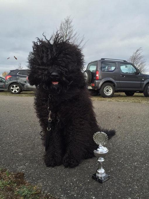 Am Sonntag war der BOB-Pokal silbern, windig war es weiterhin.